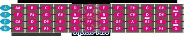 2c04541f3f5a8c8ad8256c7a76b65-2089484.png
