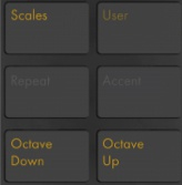 Note Section Ableton Push