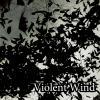 Violent Wind