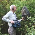 Documentales sonoros de la BBC