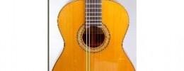 Cómo conservar bien tus guitarras