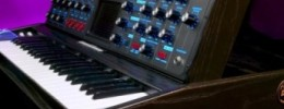 Actualizaciones de OS y hardware para Voyager y Little Phatty