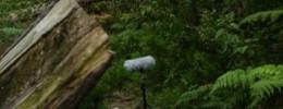 Guía de grabación de campo - #00 Introducción