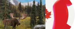 El vinilo canadiense de Serato
