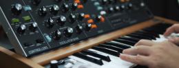 Behringer Poly D, un Minimoog - Model D en versión teclado y con parafonía a 4 voces