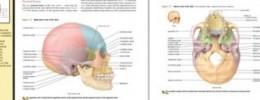 Kurzweil revoluciona los lectores electrónicos con Blio