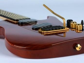 Aquí está la Moog Guitar