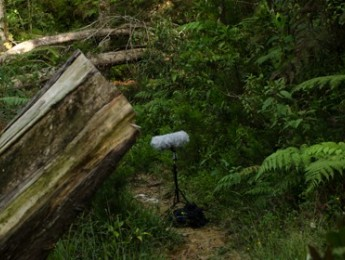 Guía de grabación de campo - #02 Grabadoras