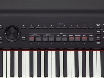 Nuevo piano de escenario Roland RD-800