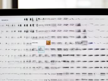 Explora miles de sonidos de aves organizados mediante inteligencia artificial