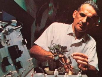 Música, plantas, MIDI y el poligrafista de la CIA