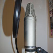 Micrófono Rode NT 1000 (2)