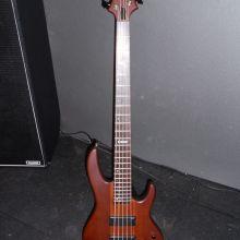 LTD - D5