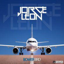 Jorge Leon - Bowerbird