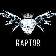 Raptor Logo foto 3