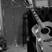 Aria pro 12 strings