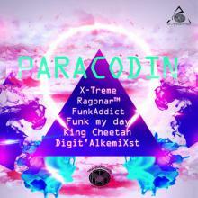 Paracodin Remix