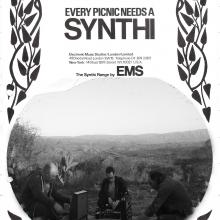 Every Picnic needs a Synthi