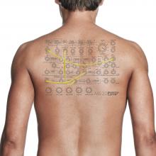 ms20 tatoo