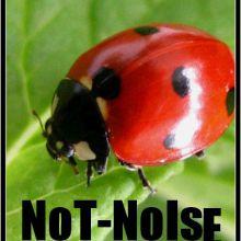 NoT--NoIse