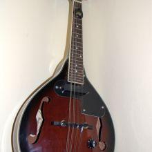 La mandolina