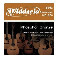 D'Addario EJ42 Resophonic Guitar [16-56]