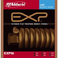 D'Addario EXP16 - Phosphor Bronze Light [12-53]