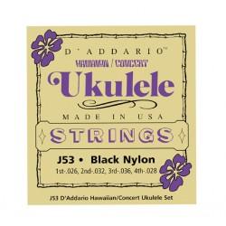 D'Addario J53 Hawaiian Ukulele Black Nylon