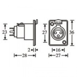 Adam Hall Connectors 7841 - Conector Chasis XLR hembra