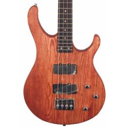 Canvas Bass