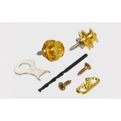 Loxx Gold Acoustic