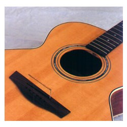 BarcusBerry 1460 Acoustic Thinline