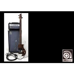 Ampeg SVT Micro