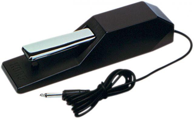 Korg DS-1H
