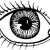 A Los Ojos de La Gente - PaPiao