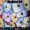 Diamond Set - Flowers in February