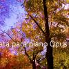 Sonata para piano Opus 600