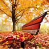 Autumn Leaves (ZzAJeerF/Maikelsolo)