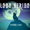 LOBO HERIDO (Víctor G Clef)