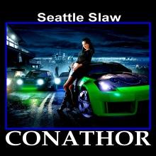 Seattle Slaw