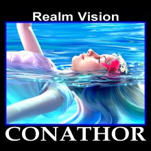 Realm Vision
