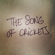 The song of crickets