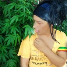 PekmeN Rasta (BomboLife)-ReggaeDub-2014