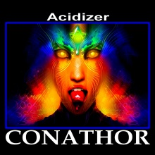 Acidizer