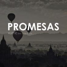 Promesas (feat. B Roja & Bros)