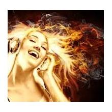 The Fire  (bart1 remix)