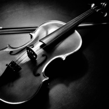 Dani Corbalan - Black Viola