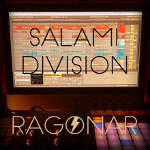 Salami Division
