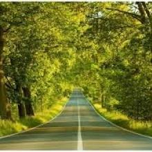 Buscando Un Camino
