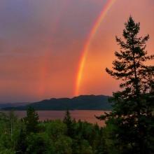 (3/10) La lluvia y el arcoíris (El pequeño bosque fantástico)